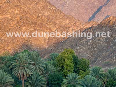 hatta oman mountain tour