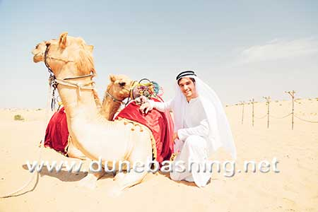 camel safari in morning